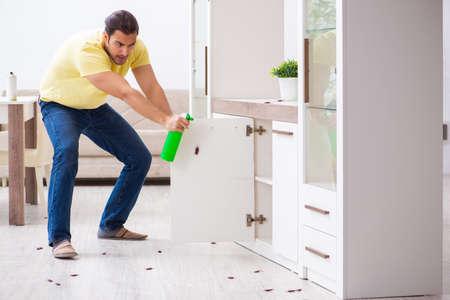 Les bonnes solutions pour exterminer les fourmis dans une maison