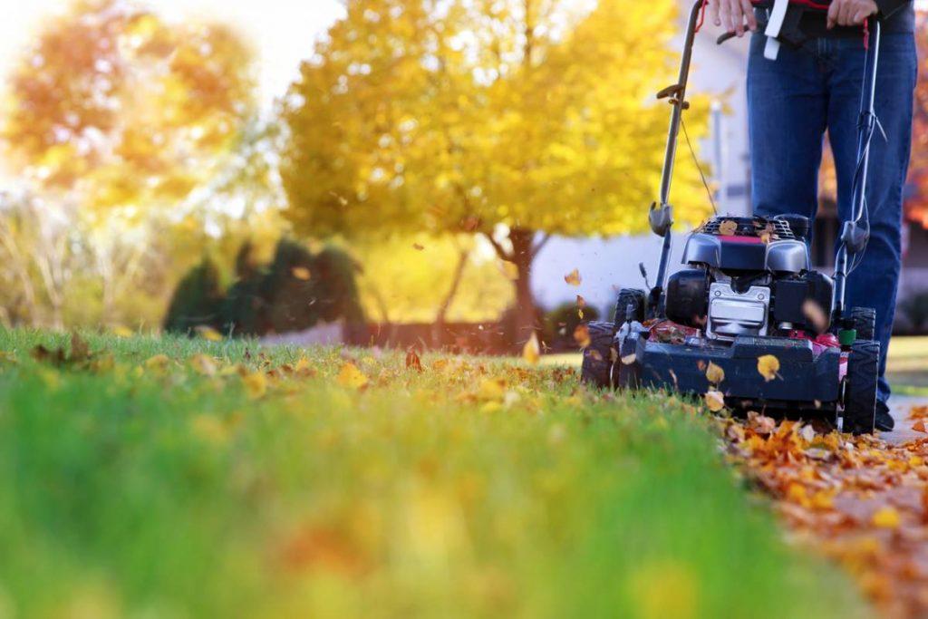 Jardin : à quel moment faire appel à un paysagiste ?